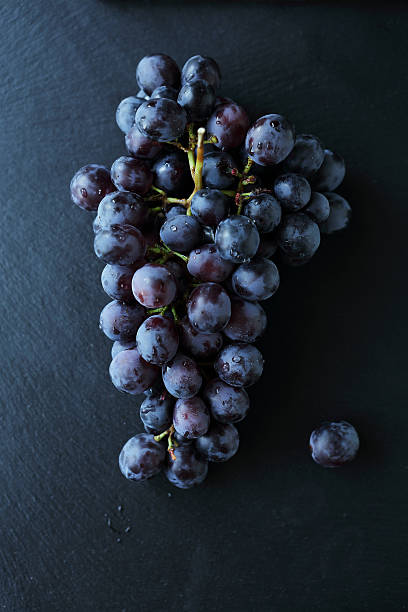branch of blue grapes on slate stock photo