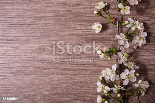 istock A branch of cherry blossoms on a wooden background with a warm lamp light. white spring flowers, flat lay. 681885552