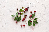 branch of raw cherry berries with green leaves flat lay
