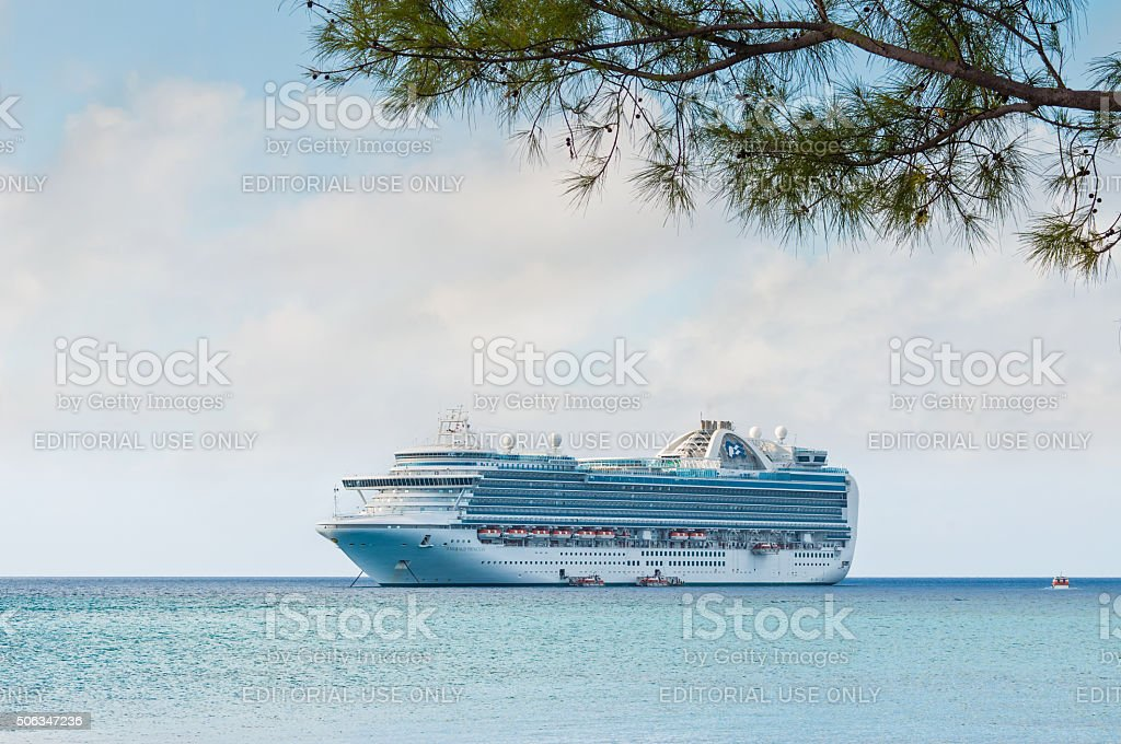 Branch on a tropical beach and cruise ship stock photo
