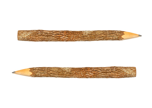 Branch Pencil On A White Background — стоковые фотографии и другие картинки Арматура