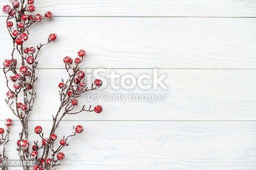 Branch with frozen red berries on the white wooden floor.