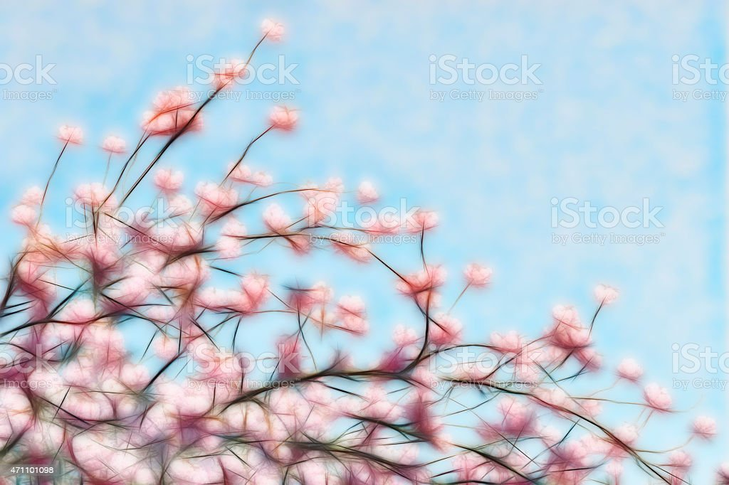 Abstract pink cherry blossom in spring  oriental look stock photo