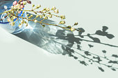 istock branches of cherry blossom in a glass of water 1214012805