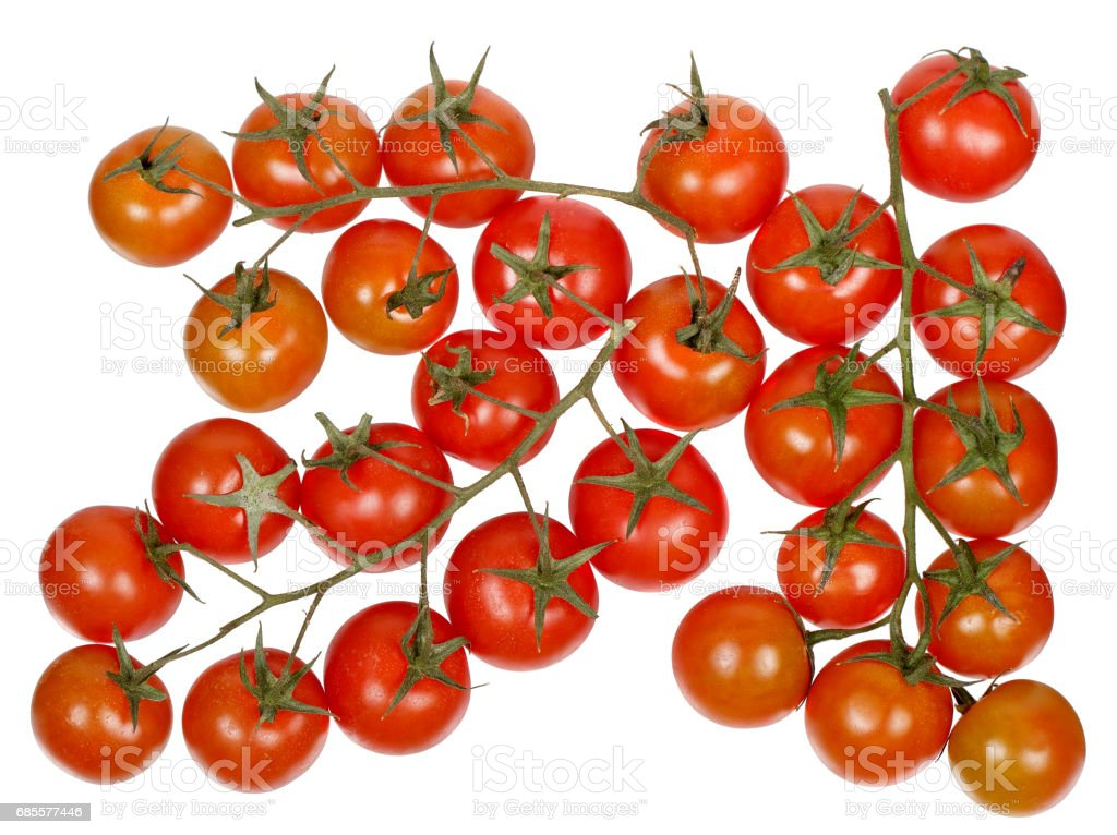 櫻桃番茄的分支 免版稅 stock photo