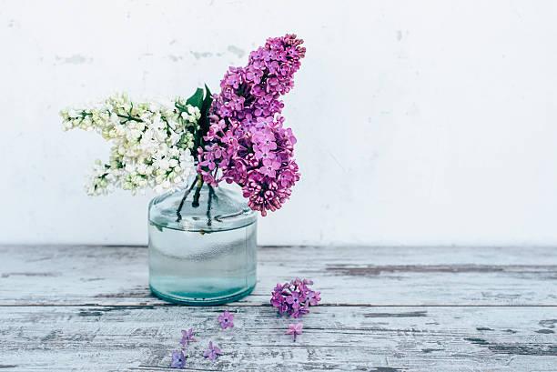 zweige flieder in glasvase auf einem holztisch - vase glas stock-fotos und bilder