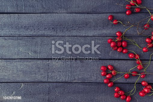 istock Branches with red berries 1042610786
