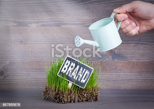 istock Brand concept. Fresh and green grass on wood background 657955676