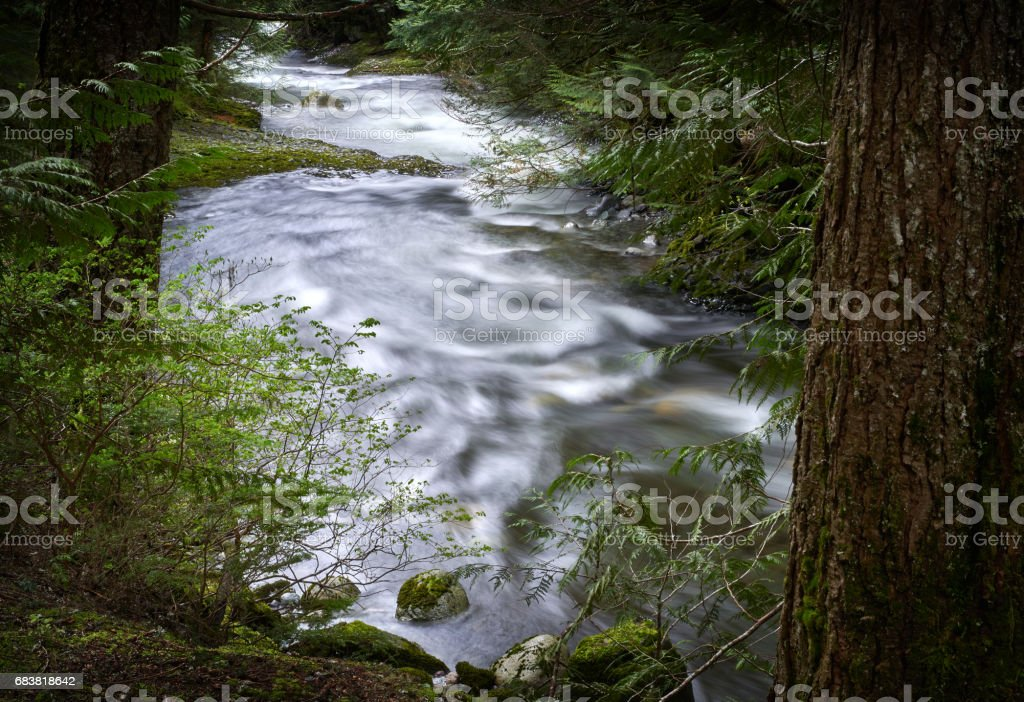 Brandywine Creek, Whistler stock photo