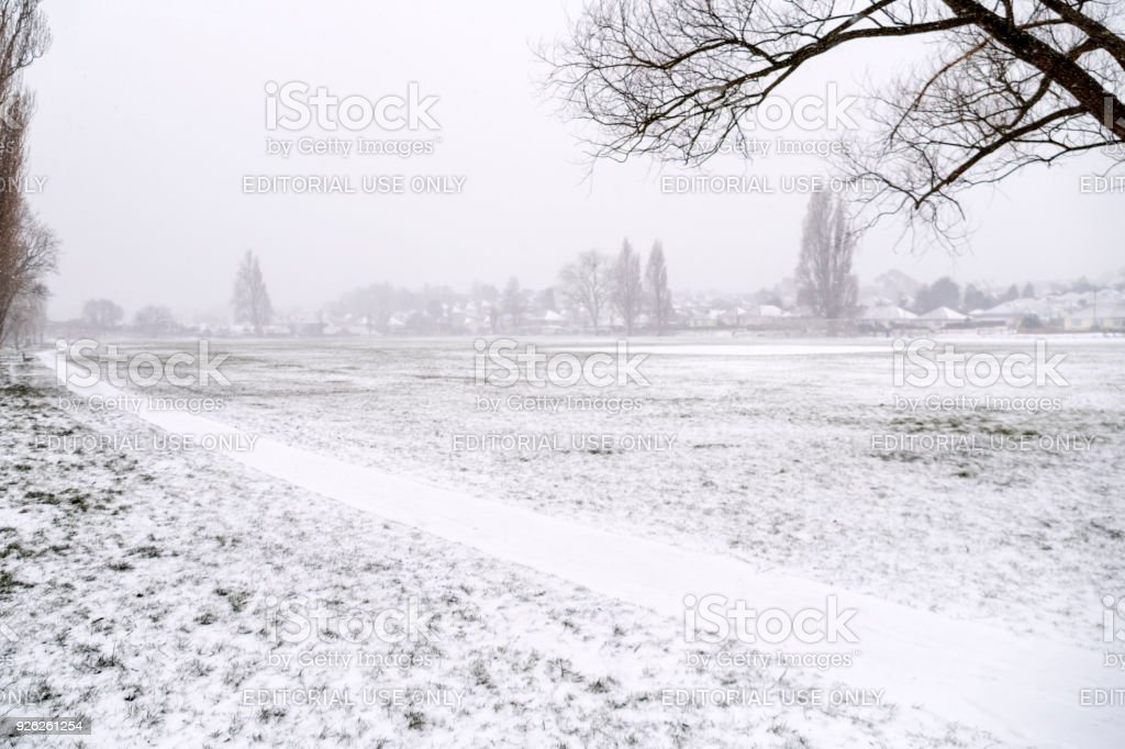 Branksome Park covered in snow stock photo