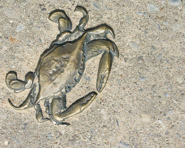 Brass crab plaque stock photo