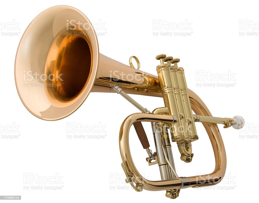 Brass horn on white background stock photo