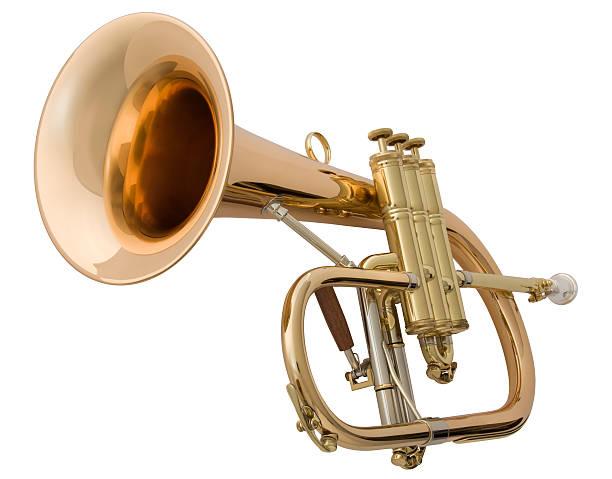금관 집음기 - 트럼펫 뉴스 사진 이미지