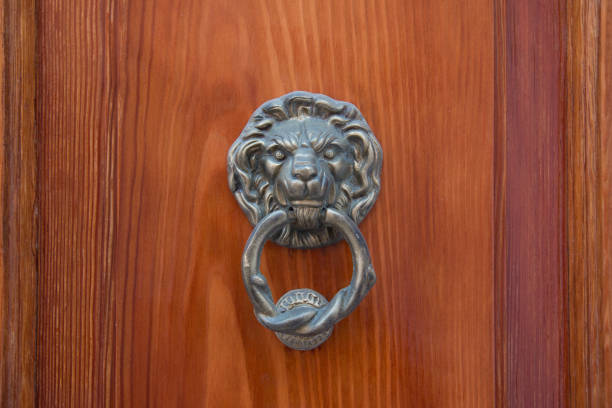 brass lion head with a large brass ring gripped in its mouth. detail of an italian wooden door. - going inside eye imagens e fotografias de stock