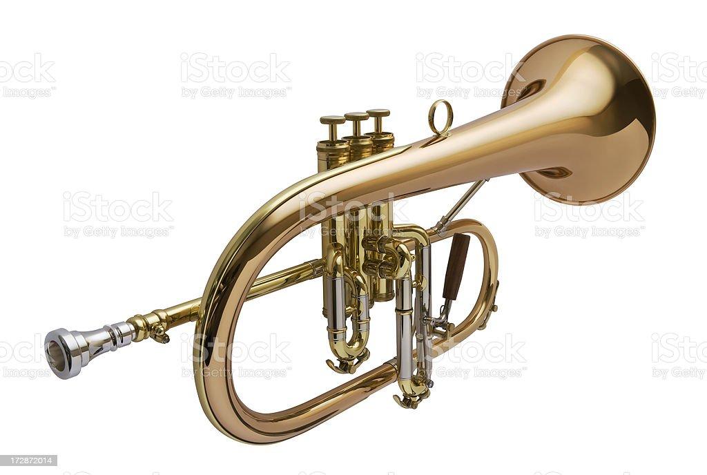 Brass Wind Instrument stock photo