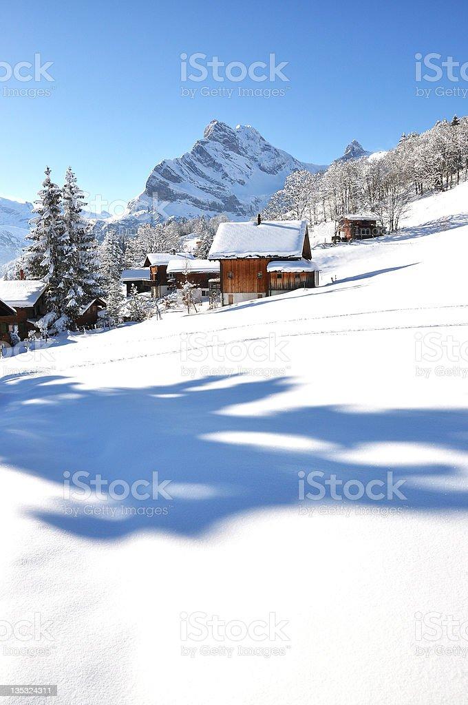 Braunwald, Switzerland royalty-free stock photo