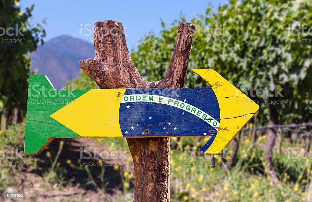 Brazil Flag wooden sign with vineyard background stock photo