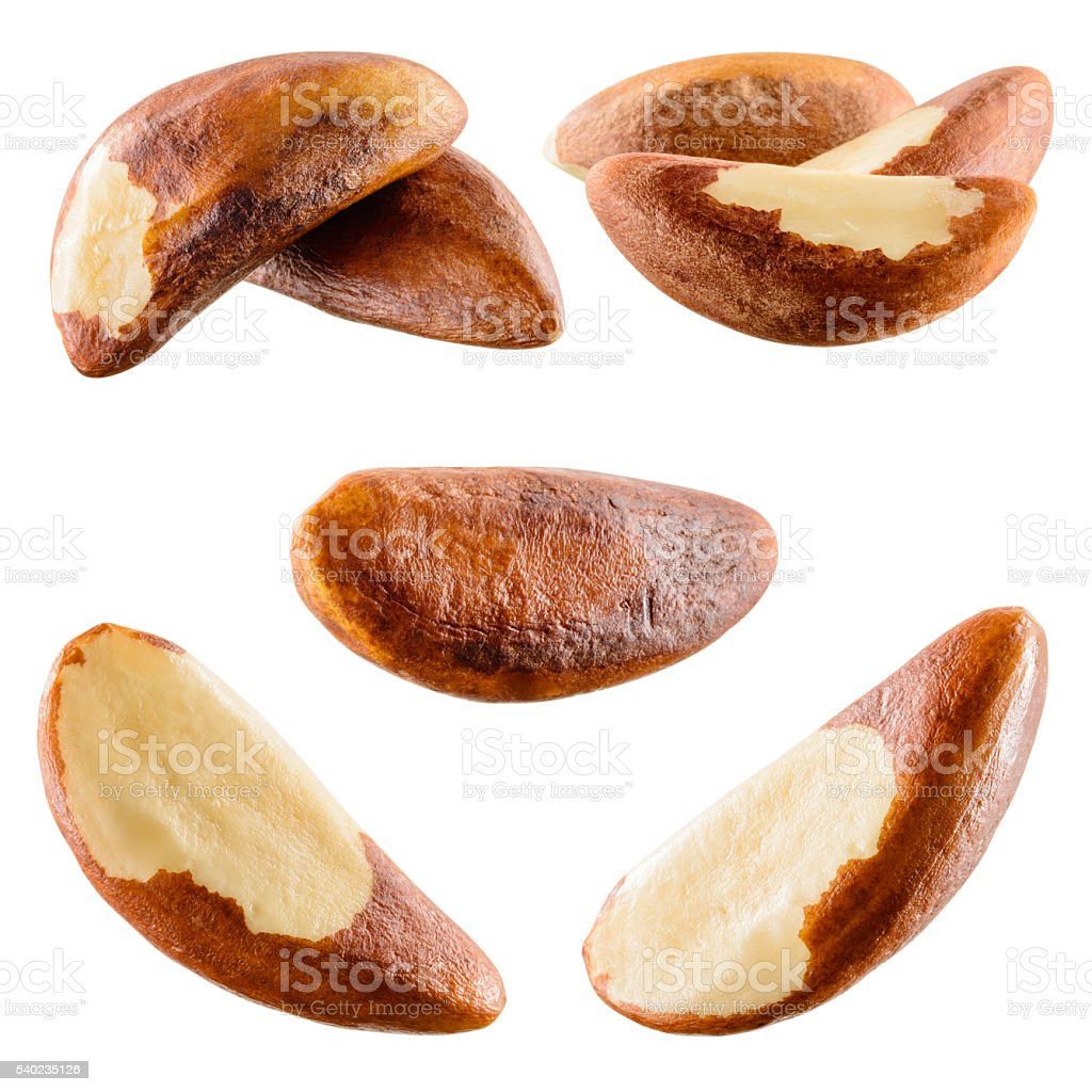 Brazil nut isolated on white background. Collection. stock photo