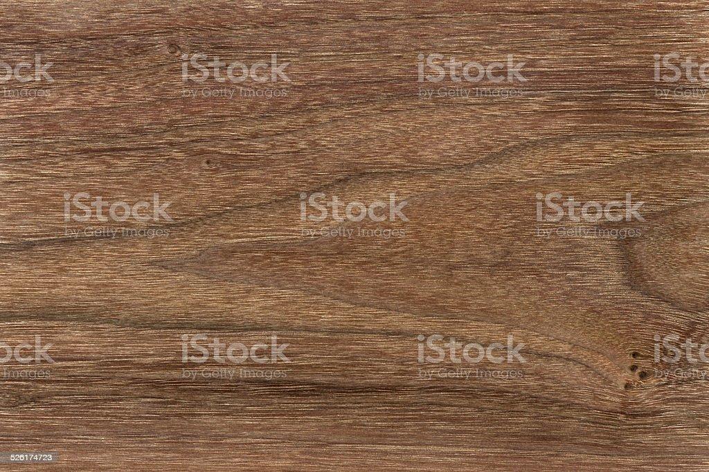 Brazil nut. stock photo