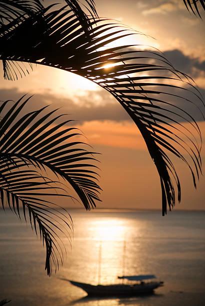 brazil sunset silhouette stock photo