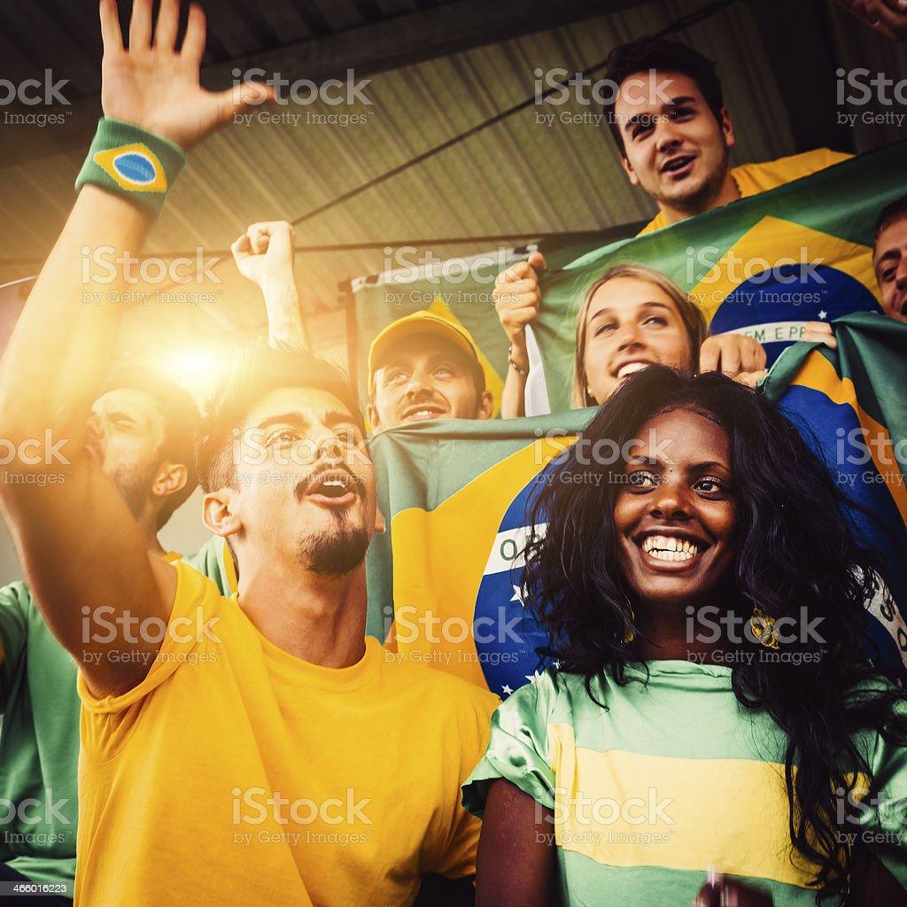 Brazilian Fans at Stadium royalty-free stock photo