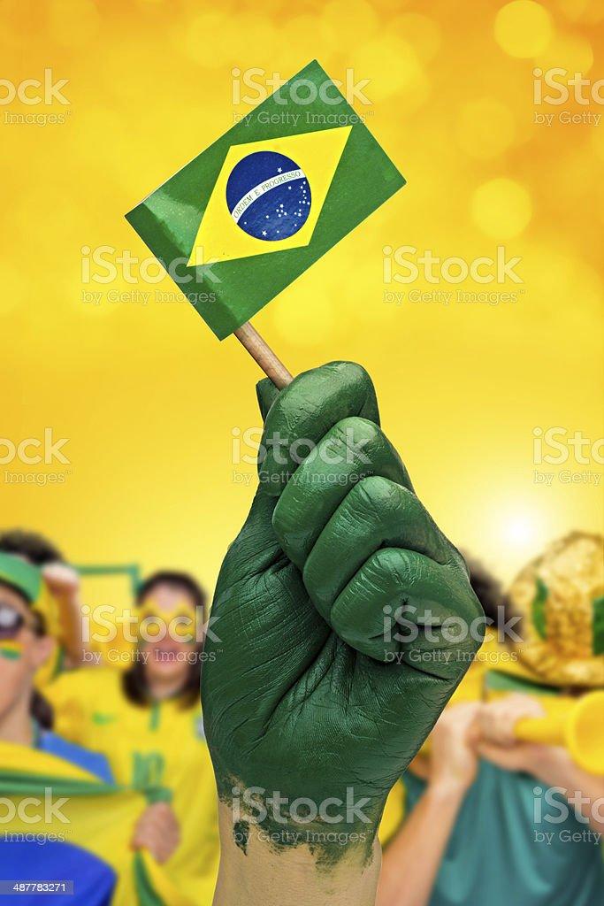 Fãs brasileiros patriot - foto de acervo