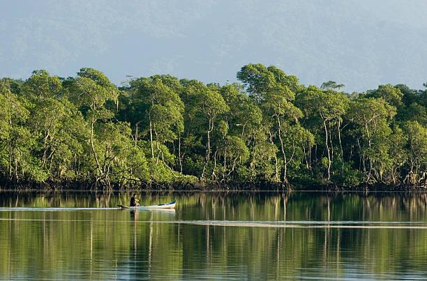 Brazilian Fisherman stock photo