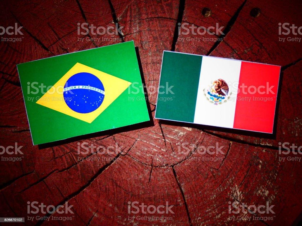 Bandera de Brasil con bandera mexicana en un tocón de árbol aislado - foto de stock