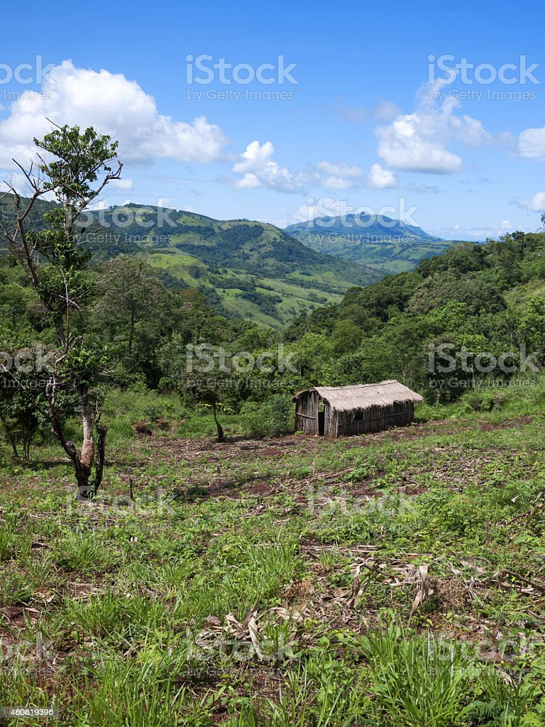 Brazilian indian land stock photo