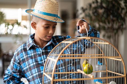 Brazilian Kid Portrait with Costume of Junina Party holding a bird cage (Festa Junina)