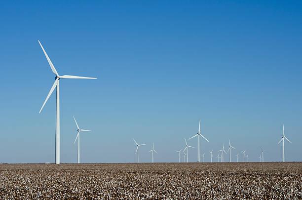 Brazos Wind Farm in Cotton Fields