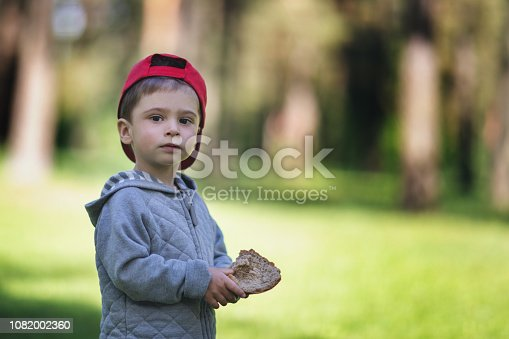 istock Bread in the hand of a child. The boy in the forest holds food in his hand 1082002360