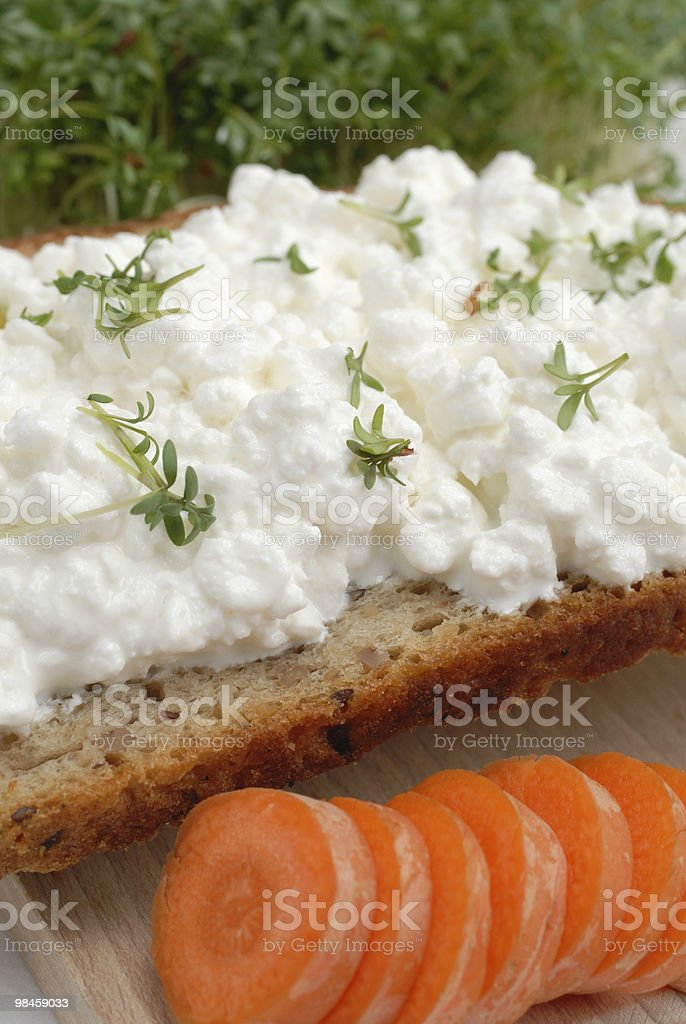 Bread with cheese and radish royalty-free stock photo