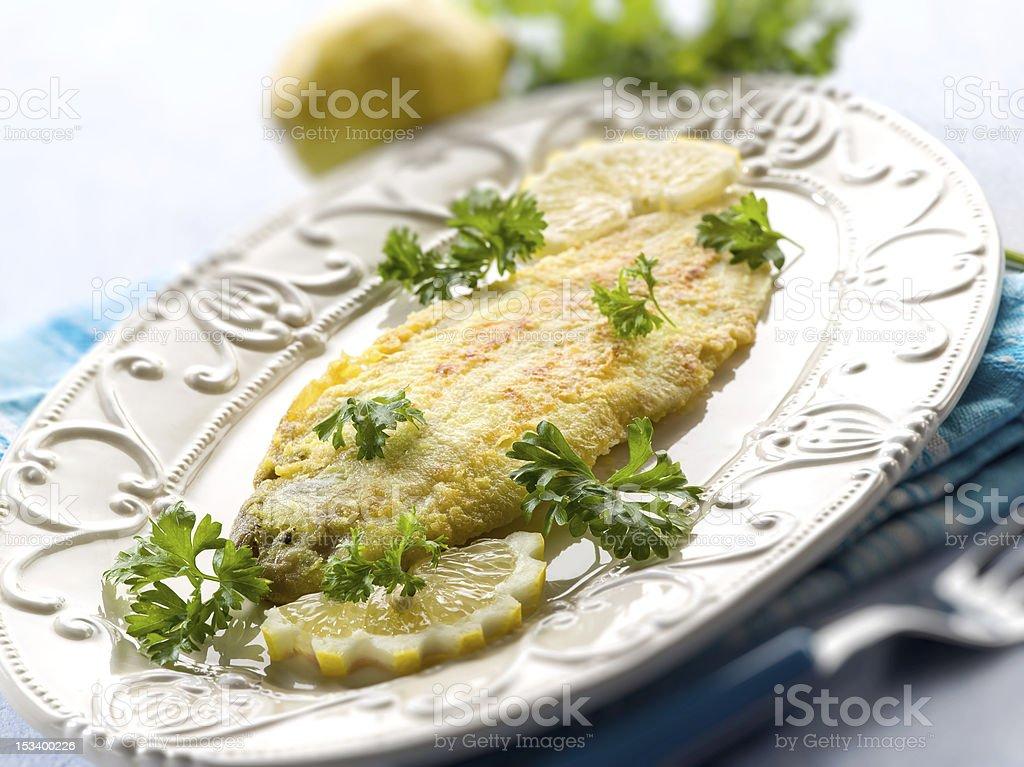 breaded sole fish stock photo