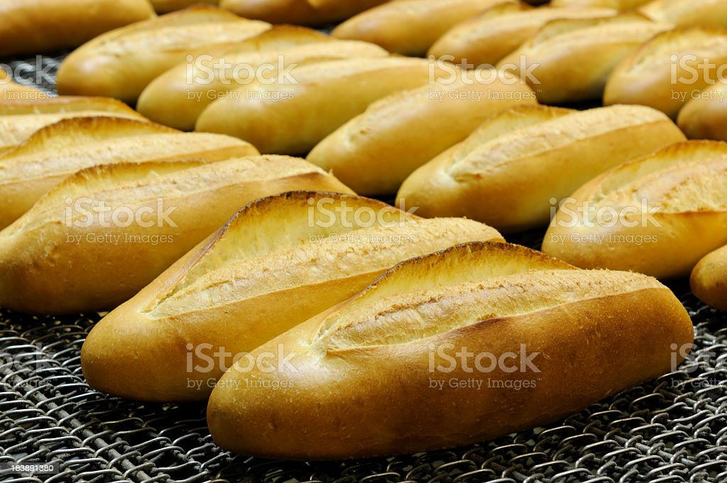 Breads royalty-free stock photo