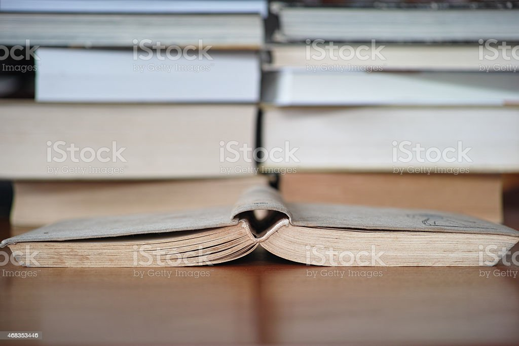 Break in Reading royalty-free stock photo