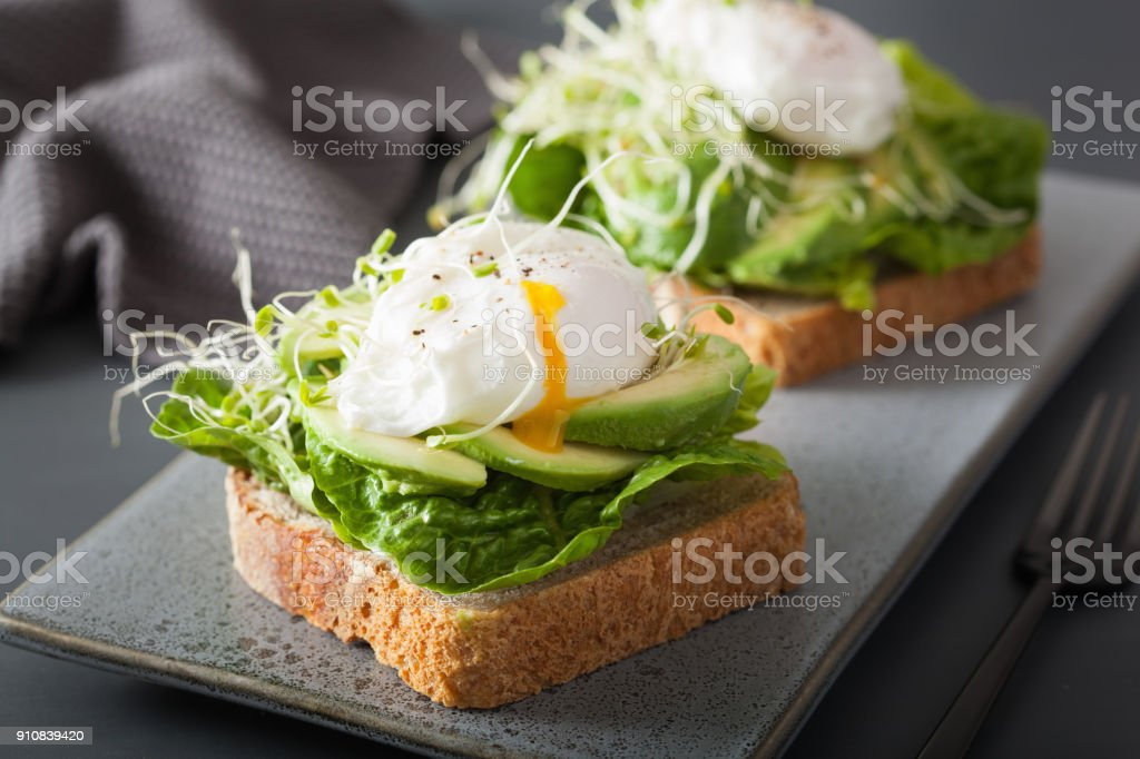 breakfast toast with avocado, poached egg and alfalfa sprouts stock photo