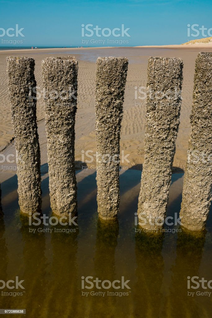 breakwater on the beach of Burgh Haamstede, The Netherlands stock photo