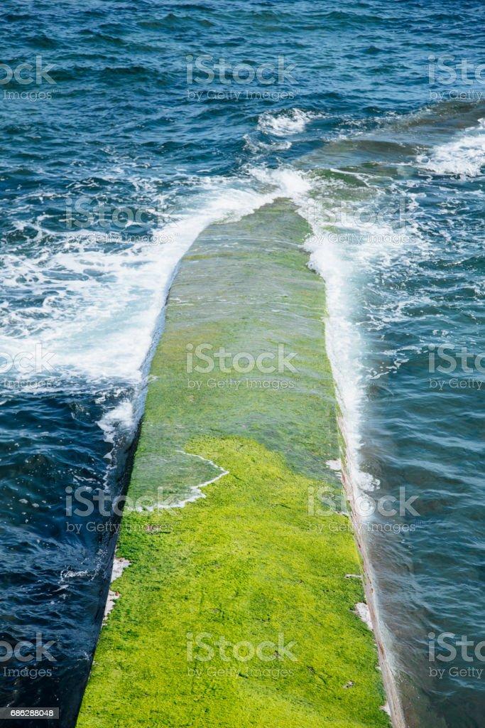 Breakwater with moss stock photo
