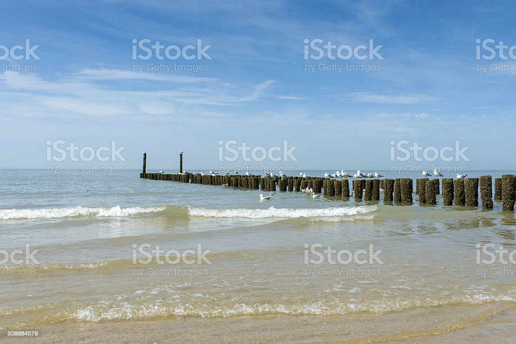 breakwaters in waves on the beach at the north sea stock photo