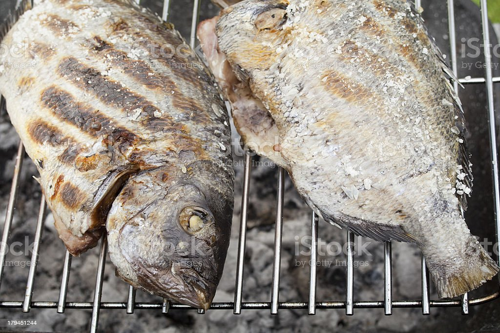 Bream on the grill. royalty-free stock photo
