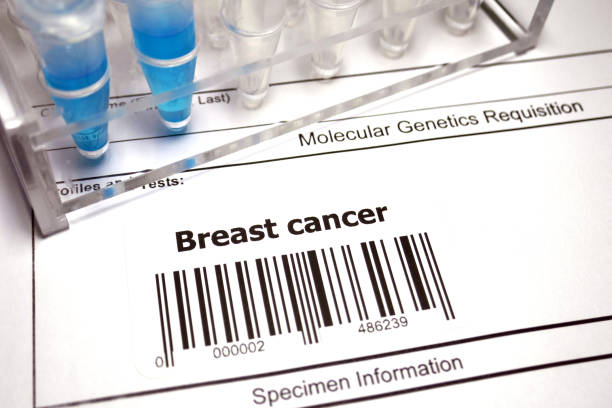 breast cancer - medical test stock pictures, royalty-free photos & images