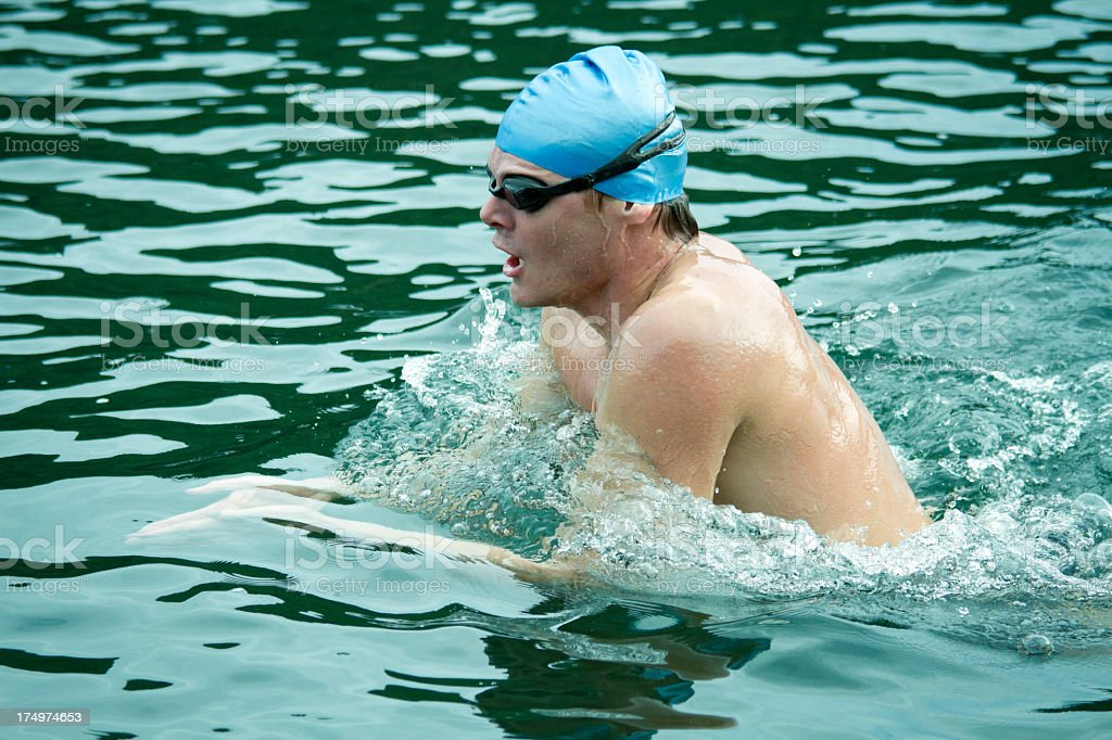 Breaststroke swimmer in open water royalty-free stock photo