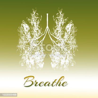 Breathe - Lung of trees in concept for health