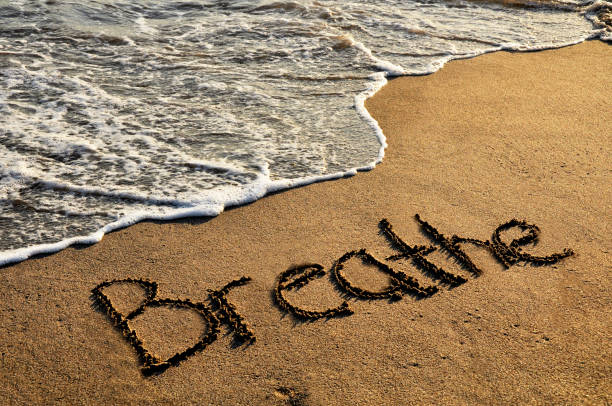 respire - escapismo - fotografias e filmes do acervo