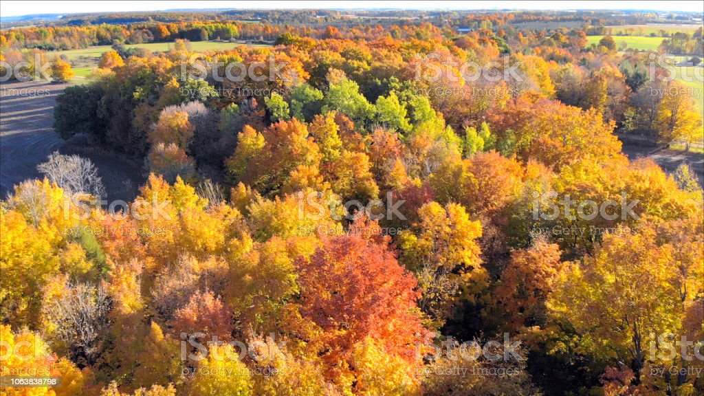 Breathtaking aerial view of idyllic Autumn neighborhoods. stock photo