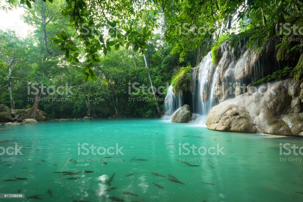 Breathtaking green waterfall stock photo
