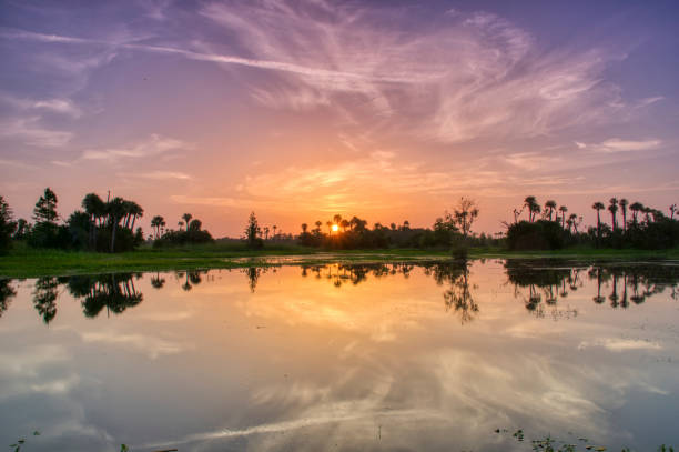 Breathtaking Orlando Wetlands Park During a Vibrant Sunrise in Central Florida USA stock photo