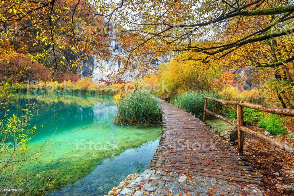 Breathtaking tourist pathway in colorful autumn forest, Plitvice lakes, Croatia stock photo