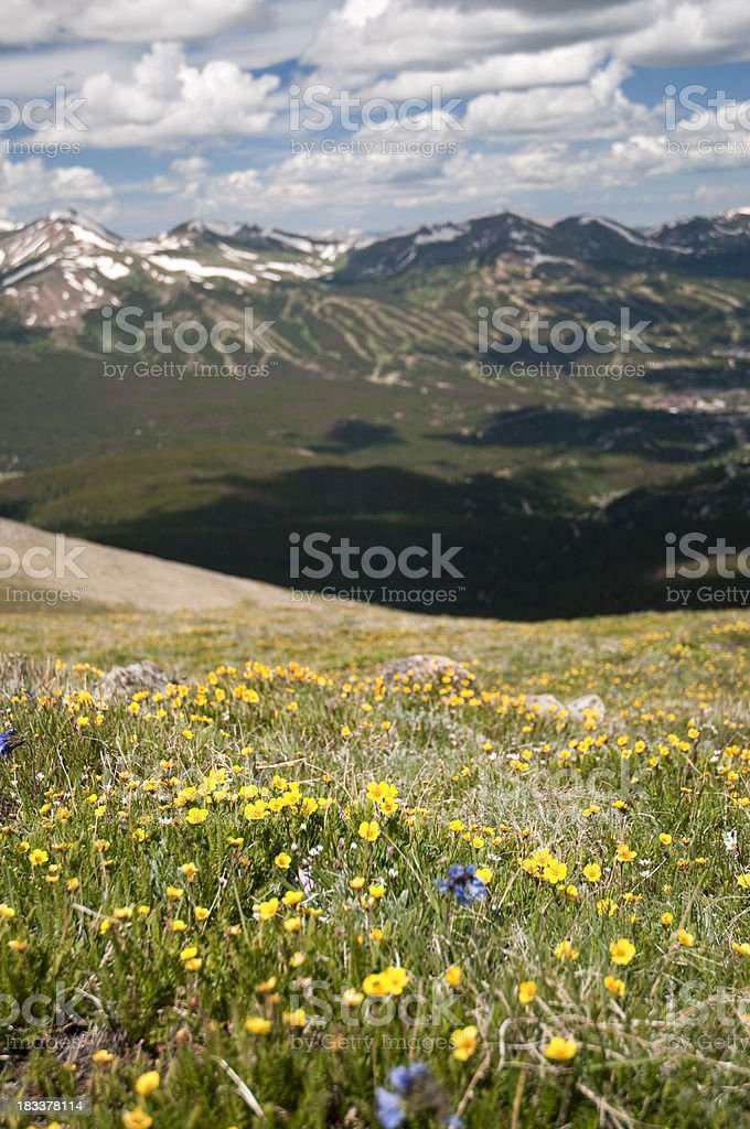 Breckenridge Ski Area in July stock photo